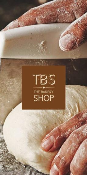 TBS Concept